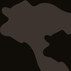 Herd Sire - CK Zodiak 92Z